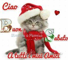 buon sabato belle immagini natalizie (3) Good Saturday, Good Morning Good Night, Merry Christmas, Santa, Teddy Bear, Cristiani, Animals, Genere, 3