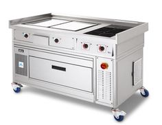 Commercial Induction Cooking Range
