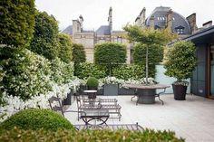#Lovely  small #garden