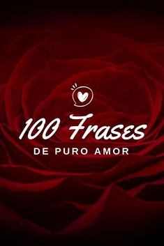 💗As 150 frases de amor mais visitadas para Inspirar, Emocionar e Comover quem. 150 Most Visited Love Phrases to Inspire, Thrill and Touch Who You Love! Check out our beautiful love messages! Who You Love, Love Phrases, Love Messages, Beautiful Love, Most Visited, Life Organization, Cool Words, Self Love, Spirituality