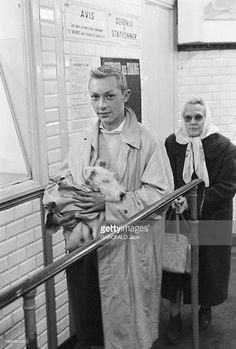 Meeting With Jean-Pierre Talbot, Playing Tintin. France, 10 octobre 1960, l'acteur belge Jean-Pierre TALBOT incarne le personnage 'Tintin' sur grand écran. Ici dans un couloir du métro, il fixe l'objectif, tout en tenant son chien MILOU, un fox-terrier, enveloppé dans une petite couverture, calé dans ses bras.