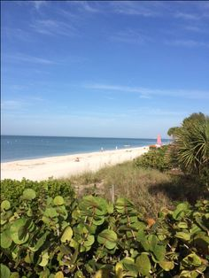 Enjoy the relaxing sounds of the wind and waves along the shore in North Naples, Florida. Bonita Beach, Winter House, Naples, Luxury Homes, Relax, Florida, Real Estate, In This Moment, Water