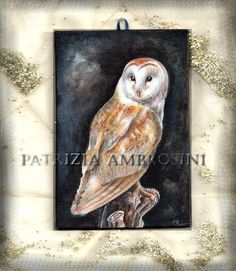original painting  barn owl  acrylic by happyapplebumblebee