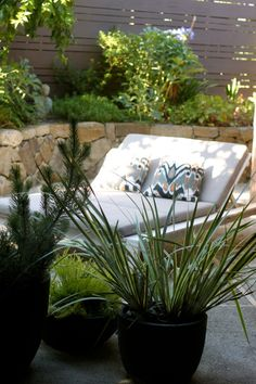 west elm double lounger, pillows and plants