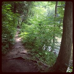 Day hike, Mohican State Park, Ohio