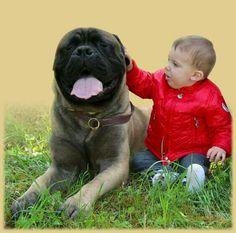 Niños con mascotas