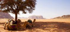 Aqaba, Jordan  #JetsetterCurator