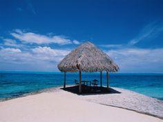 Siesta Key beach- I'd love to see the beautiful water Dream Vacations, Vacation Spots, Cool Desktop Backgrounds, Siesta Key Beach, Palm Trees Beach, Nature Beach, Beach Images, Beach Wallpaper, Beautiful Beaches