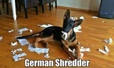 GSD the ultimate paper shredder.