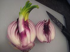 I'm quite perplexed.   I was talking to a friend the other day about growing onions. For a few years now (I think this is the third year),...