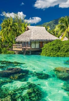 Although over 95% of the Maldives consists of water there is over 1100 individual islands that make up the chain Vacation Places, Dream Vacations, Places To Travel, Places To See, Travel Destinations, Time Travel, Dream Vacation Spots, Holiday Destinations, Holiday Places