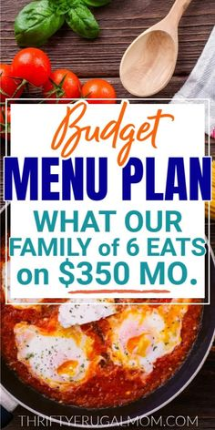 Looking for frugal meal ideas for your family? Check out this menu plan full of all the meals that we've enjoyed recently. Lots of great healthy, budget friendly options that are quick and easy to make too! #thriftyfrugalmom #mealplan #menuplan Budget Family Meals, Family Meal Planning, Budget Meal Planning, Dinner On A Budget, Easy Family Dinners, Healthy Family Meals, Frugal Meals, Easy Meals, Frugal Family
