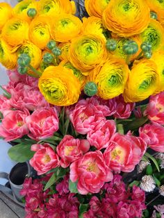 Flores de distintos colores créeme son hermosas