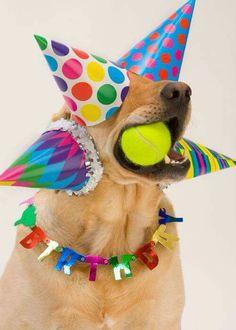 """ It's my birthday "" LOL"