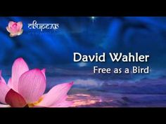 David Wahler - Free as a Bird