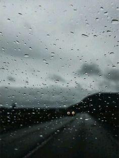 Rain love....