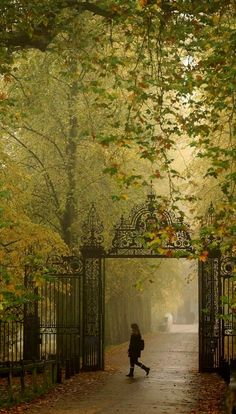 UK Weather: Fog Disrupts London Flights And Train Travel (PICTURES).rear gate entrance to Trinity College in Cambridge UK Beautiful World, Beautiful Places, London Rain, Train Travel, Travel Usa, Places To See, Scenery, Around The Worlds, In This Moment