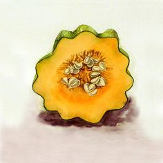 Fine Art Acorn Squash Watercolor Print Vegetable Women Men Kitchen and Mustard Yellow Speckled x Priced Under 25 Orange Painting, Fruit Painting, Painting Prints, Watercolor Paintings, Wall Art Prints, Original Paintings, Watercolours, Vegetable Painting, Vegetable Prints