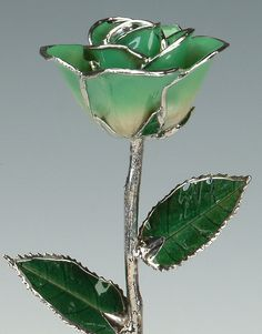2-Tone Light Green Platinum Rose by Living Gold  by LivingGoldCo