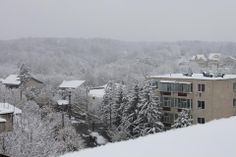 First snow - at Medical Tours Company Dental, Tourism, Medical, Snow, Outdoor, Turismo, Outdoors, Medicine, Outdoor Games