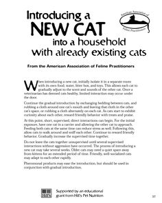 """#PetTips """"Introducing a New Cat into a Household with ... Existing Cats"""" From American Association of Feline Practitioners"""