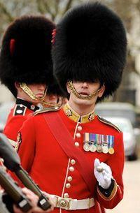 The Coldstream Guards is an elite light role infantry regiment famous for being the oldest regular regiment in the British Army. In recent years, Coldstream Guards have been deployed to Northern Ireland, the Balkans, Iraq and Afghanistan.