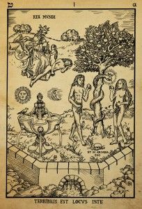 alchemy, woodcut terebilis est ocus iste, by dashinvaine-d62i0xe