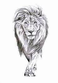 Image result for lion tattoos for women