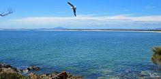 ✣ Bridport,Tasmania ✣  Photograph © Ellen Vaman  www.facebook.com/ellen.vaman1 #EllenVaman #Photography #Tasmania #Bridport #Beach #Ocean