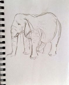 Elephant at Blair Drummond Safari Park Sketchbook Drawings, Sketching, Observational Drawing, Draw Animals, Animal Drawings, Safari, Charcoal, Elephant, Animation