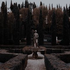 Blue Aesthetic, Aesthetic Photo, Wattpad, Executive Woman, Greek Gods And Goddesses, Aesthetic Tattoo, The Secret History, Classic Literature, Rest Of The World