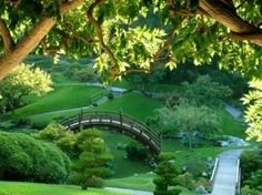 Japanese garden by jbpitcher