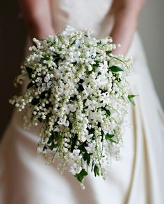 Wedding Wednesday : Flower Focus - Lily of the Valley | Flowerona