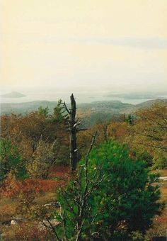 Lake Winnipesaukee from Caverly Mountain