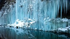 icicles - Google Search