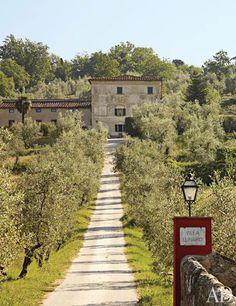 The main approach to Villa Lunardi, the Pratesi family's 17th-century stone manor in Tuscany, cuts through an ancient olive grove.