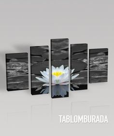 Large CANVAS WALL ART  - White Lotus Flower on Water Lily Black and White Photo on Canvas Art Printing