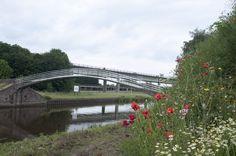 The Elbow Bridge in poppy regalia Newark On Trent, Poppy, Bridge, Bridge Pattern, Bridges, Poppies, Attic, Bro