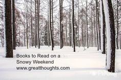 affiliate links Though the weather outside is frightful (ok those in Califonia and Floria quit snickering), the books inside can be delightful: Books to Read On A Snowy Weekend For many of us, the weather is WAY too cold. Here are a few reads for such days…..   And another great read for a …