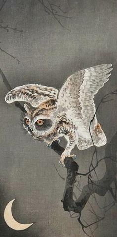 Owl by Hiroshige