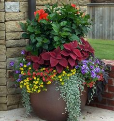 Stunning Container Gardening Ideas Beautiful blossoms are a sure sign of Spring, and soon enough we will all be able to enjoy brightly adorned gardens. If you love container gardening, then this list of ideas just may inspire you w…Beautiful blossoms are Outdoor Flowers, Outdoor Plants, Potted Plants For Patio, Outdoor Flower Planters, Fence Plants, Outdoor Spaces, House Plants, Outdoor Gardens, Beautiful Gardens