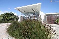 Jardim Botânico de Auckland