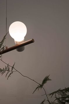 Ideal Home Show, Celestial, Lighting, Outdoor, Home Decor, Outdoors, Decoration Home, Room Decor, Lights