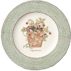 Buy Sarah's Garden Plate Green at RoyalDesign Dining Plates, Kitchen Dining, Sarah's Garden, Wild Strawberries, Wedgwood, Beautiful Hands, Home Kitchens, How To Draw Hands, Decorative Plates