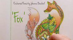 Enchanted Forest - Johanna Basford; Fox