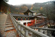 Destination: Guinsa - Buddhist high-rises and an elevator inside a temple (Chungcheongbuk-do) » Chris in South Korea #WeirdAsia #WeirdandWonderfulKorea