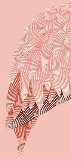 Rose Flamingo Wine on Behance