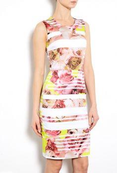 Lena Peony Stripe Stretch Cotton Shift Dress by Preen....in love I am