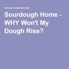 Why Won't My Dough Rise? - Sourdough Home Making Sourdough Bread, Yeast Bread, Bread Making, Savory Scones, Savory Tart, Stop Eating, Blue Berry Muffins, How To Make Bread, This Or That Questions