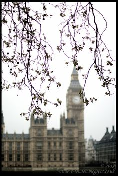 Houses of Parliament, London Houses Of Parliament, London Photos, England, Travel, Viajes, Destinations, Traveling, Trips, English